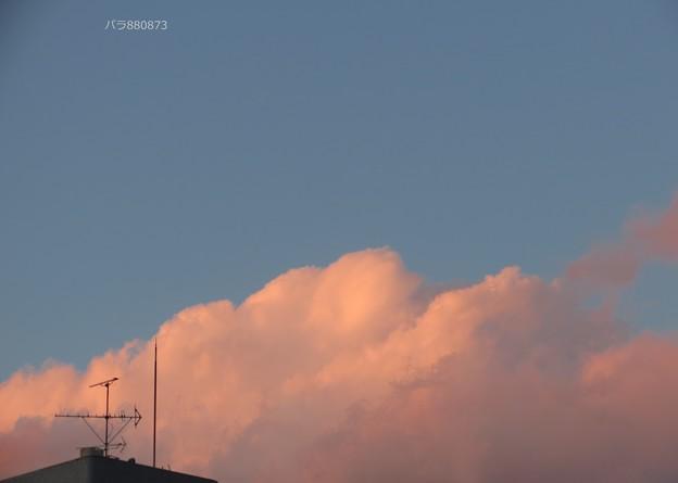 ピンク色に染まった雲がチラリ