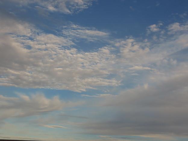 雲の表情が色々に見えて楽しい~~。