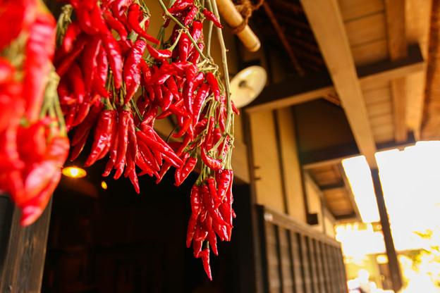 軒下の真紅  ~Crimson under the roof~
