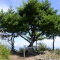 独鈷山山頂 1266m