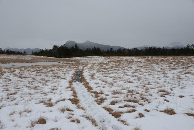 鬼怒沼から根名草山と右端に白根山