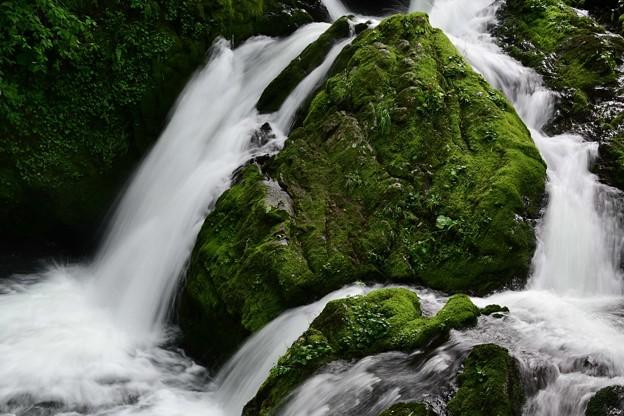 苔の岩と滝と