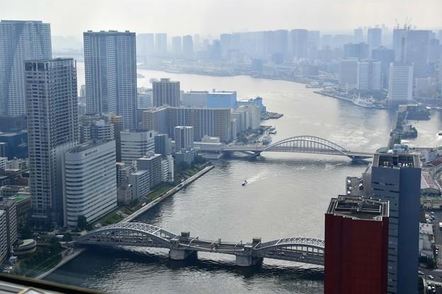 写真: 隅田川