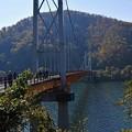 写真: 夢の掛け橋