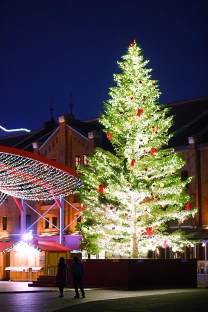 写真: キラキラのクリスマス
