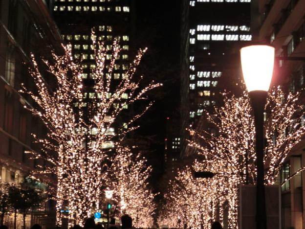 Photos: 街灯付のイルミネーション