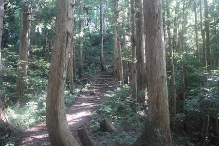 170909大岩アルプス縦走 2