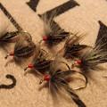 Photos: スズメの羽根