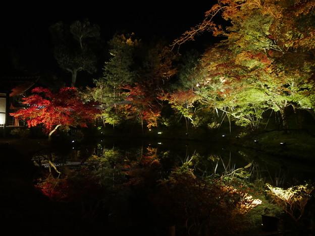 紅葉 2017 水面に映る紅葉