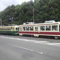 【12593号】路面電車  平成291022 #NTS1
