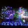 街のクリスマスイルミネーション1212