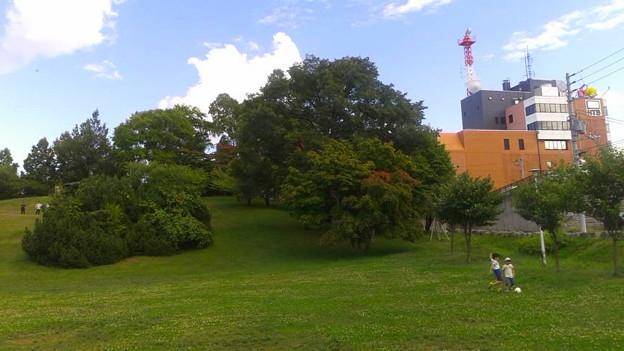 平岸高台公園6