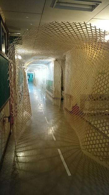 呼吸する廊下